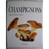 Les Champignons De Jean-Henri Fabre de Jean-Henri Fabre