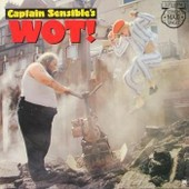 Wot - Captain Sensible