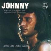 Johnny Hallyday - Voyez Ce Que Je Veux Dire