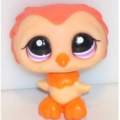 Petshop Chouette Saumon & Orange / Pet Shop #1147 Usa
