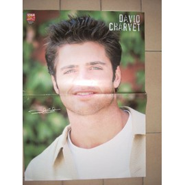 David Charvet ou Billy Crawford - Poster Moyen