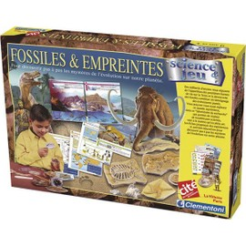 Fossiles Et Empreintes