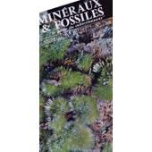 Min�raux Et Fossiles - Le Guide Du Collectionneur N� 28 : Ginsburg Hyaenaelurus, Ile D' Elbe, Tazieff, Oeufs Dinosaures, Sciage Et Polissage,...