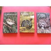 Oiseaux D'europe de claus k�nig