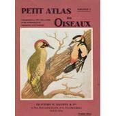 Petit Atlas Des Oiseaux - Fascicule - 2 - Passereaux (Fin) , Rolliers, Pics, Perroquets, Rapaces Nocturne de L. Delapchier