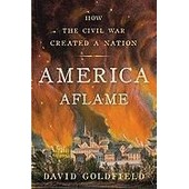 America Aflame: How The Civil War Created A Nation de David Goldfield