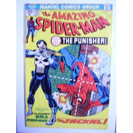 The Amazing Spiderman N� 129 : The Punisher Strikes Twice !