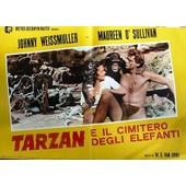 Fotobusta Format 45 X 65 Cm Du Film De Ws Van Dyke ( Ressortie Ann�es 60 En Italie ) De Tarzan E Il Cimitero Degli Elefanti