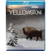 Yellowtones - Blu Ray de Murray Andrew