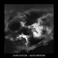 Kenji Siratori Dark Nature