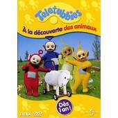 Teletubbies - A La D�couverte Des Animaux
