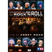 Hommage Au Roi Du Rock'n Roll