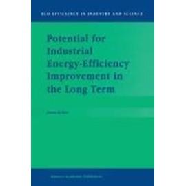 Potential for Industrial Energy-Efficiency Improvement in the Long Term - J. De Beer