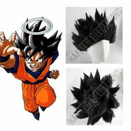 Perruque Deguisement Costume Dragon Ball Z Dbz Sangohan N