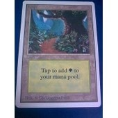 Carte Magic The Gathering - Forest