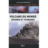 Volcans Du Monde - S�ismes Et Tsunamis de Jacques-Marie Bardintzeff