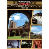 Dictionnaire D'amboise Tome 6 - Languedoc-Roussillon de Val�ry D' Amboise