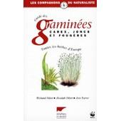Guide Des Gramin�es, Carex, Joncs Et Foug�res - Toutes Les Herbes D'europe de Richard Fitter