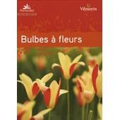 Guide Des Bulbes � Fleurs de Horticolor