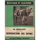 Reproduction Des Bovins, St�rilit�, Am�lioration, Ins�mination Artificielle de m brochart