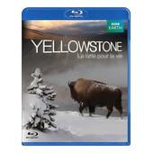 Yellowstone, La Lutte Pour La Vie - Blu-Ray