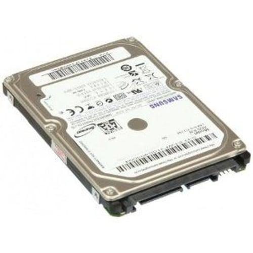 Samsung SpinPoint MP4 HM640JJ - disque dur - 640 Go - SATA-300