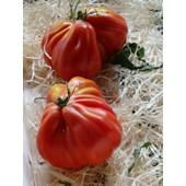 50 Graines - Tomate Coeur De Boeuf - Charnue 250 Gr Et +