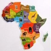 Lot De 2 Magnets Animaux D'afrique Parmi Les 19