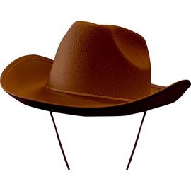 Chapeau De Cow-Boy Marron Adulte Sd