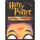 Lot De 45 Cartes Harry Potter ' Trading Card Game
