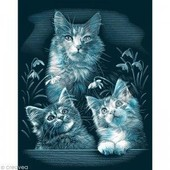 Colart - Carte � Gratter Chatons