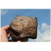 M�t�orite Nwa 6129 Chondrite H6 De 1131 Gr.