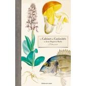 Le Cabinet De Curiosit�s D'un Naturaliste Du Xixe Si�cle - Jean-Baptiste Barla de Jo�lle Defay