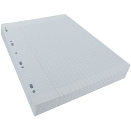 Feuilles simples achat vente neuf d 39 occasion for Feuille simple grand carreaux