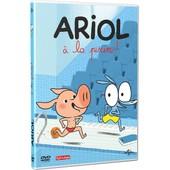 Ariol - � La Piscine ! de �milie Sengelin