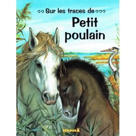 Sur les traces de Petit Poulain - Yves Doumont