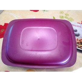 Plat four tupperware achat vente neuf d 39 occasion for Micro vap violet