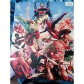 Marvel & Dc Comics : Hulk / Spiderman / Iron-Man / Superman / Colossus/ Captain America / Miss Hulk / La Chose / Cyclope Reproduction Sur Toile Ch�ssis 50 X 40 Cms Neuf !!