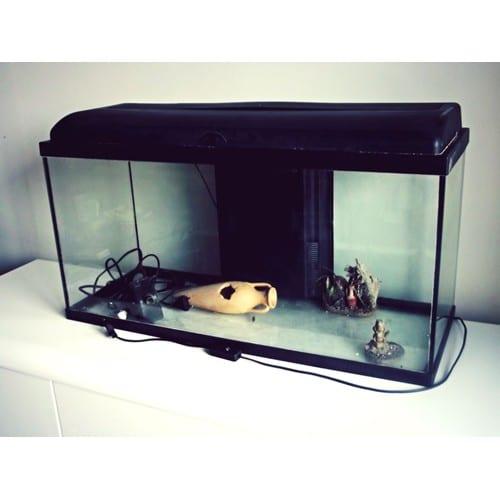 aquarium 120 litres pas cher ou d 39 occasion sur. Black Bedroom Furniture Sets. Home Design Ideas