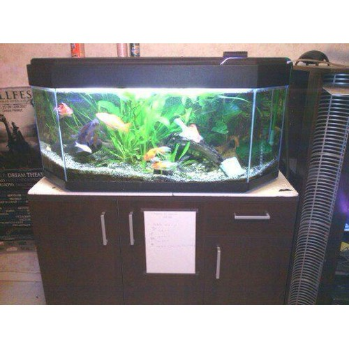 aquarium 120 litres pas cher ou d 39 occasion sur. Black Bedroom Furniture Sets. Home Design Ideas