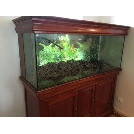 aquarium 450 litre meuble pompe eclairage achat et. Black Bedroom Furniture Sets. Home Design Ideas