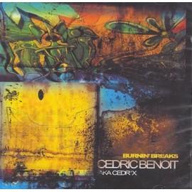 Burnin' Breaks - Benoit, Cedric