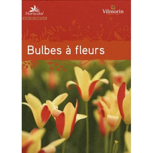 bulbes de fleurs pas cher ou d 39 occasion sur priceminister rakuten. Black Bedroom Furniture Sets. Home Design Ideas