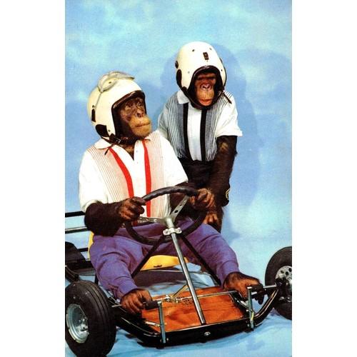 Casque Karting Pas Cher Ou Doccasion Sur Rakuten