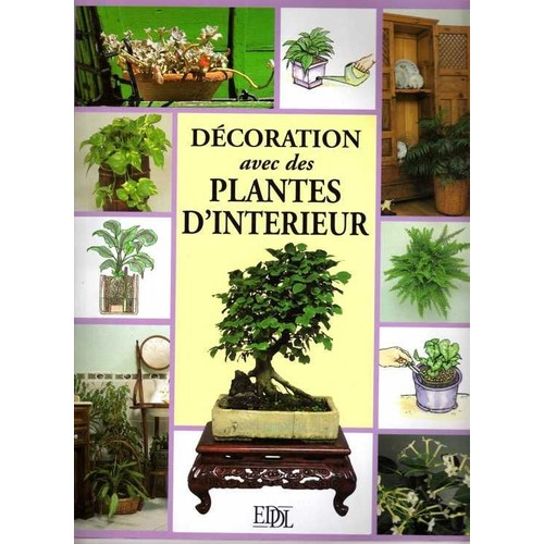 d coration avec des plantes d 39 int rieur de collectif. Black Bedroom Furniture Sets. Home Design Ideas
