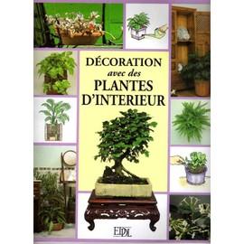 d coration avec des plantes d 39 int rieur de collectif. Black Bedroom Furniture Sets. Home Design Ideas