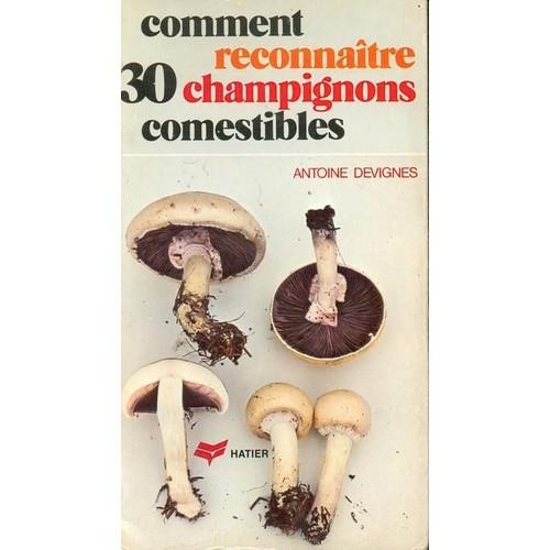 Comment reconna tre 30 champignons comestibles - Laurier comestible comment reconnaitre ...