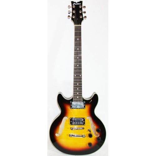 guitare electrique 12 cordes pasadena