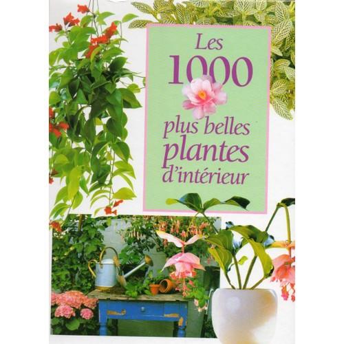 les 1000 plus belles plantes d 39 int rieur de jantra ingrid. Black Bedroom Furniture Sets. Home Design Ideas