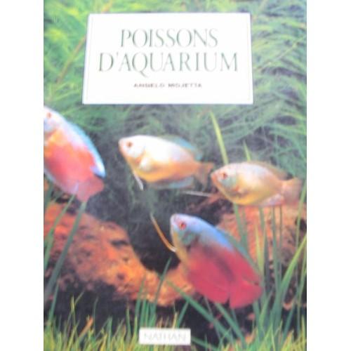 Poissons d 39 aquarium de angelo mojetta achat vente neuf for Vente poisson aquarium
